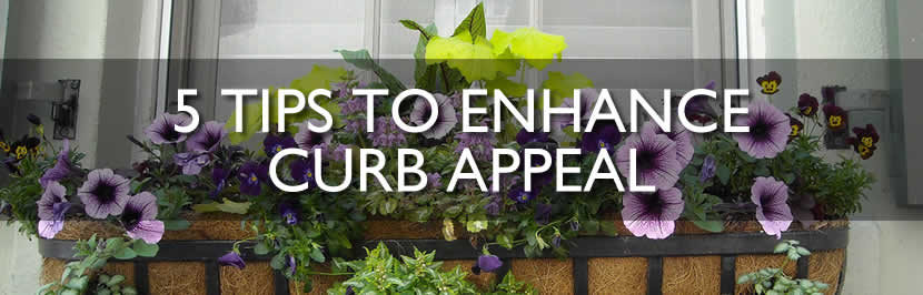Enhance curb appeal